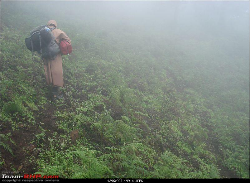 Experiencing the Monsoon - On the Horse Face and on top of KA - A Trekkalog-mbgiri-71.jpg