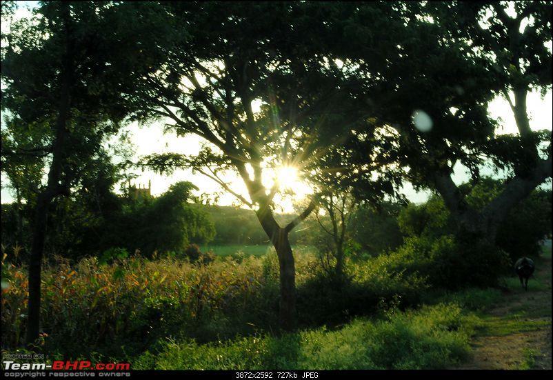 A quick set of sunsets : Around Tumkur-dsc_0948.jpg
