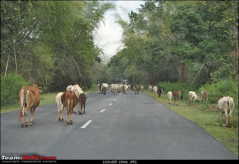 A Journey through Leisure trail of Wayand-dsc_6064.jpg