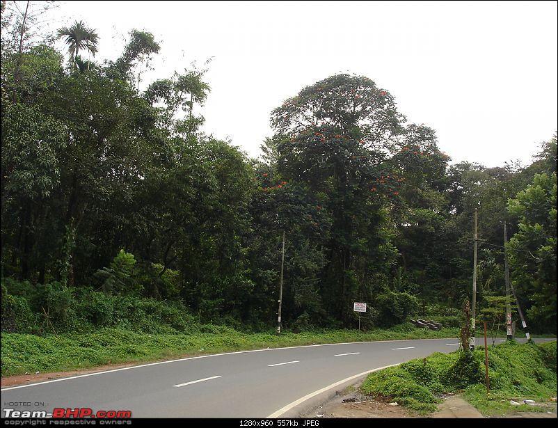 Bangalore-Wayand trip-058.jpg
