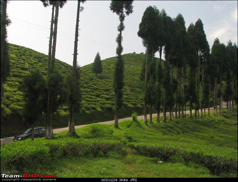 Gurashey -Lepchajagat - Pre Puja Escape to North Bengal-img_1823.jpg