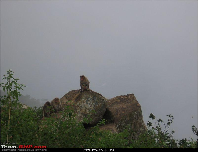 Yercaud-->Been there, Roamed there and Enjoyed-img_3735.jpg