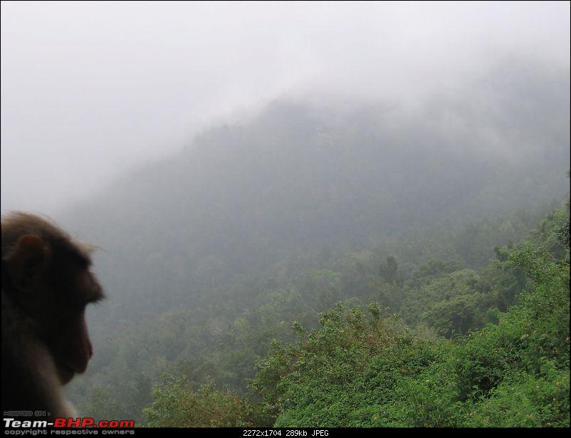 Yercaud-->Been there, Roamed there and Enjoyed-img_3739.jpg