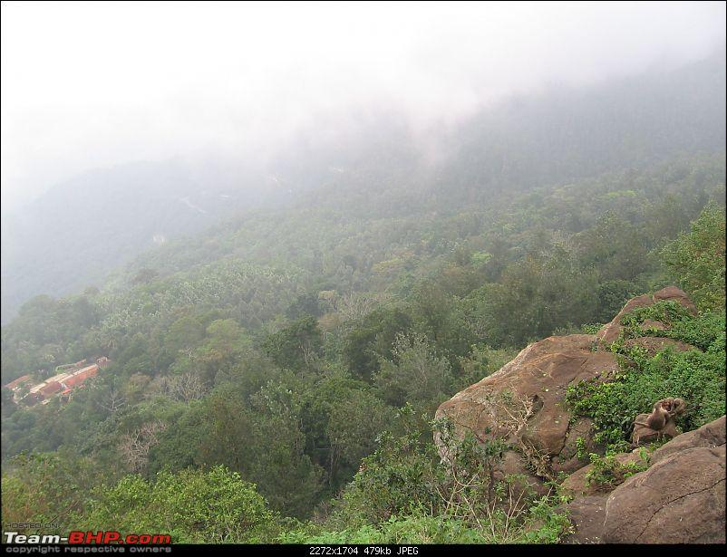 Yercaud-->Been there, Roamed there and Enjoyed-img_3747.jpg