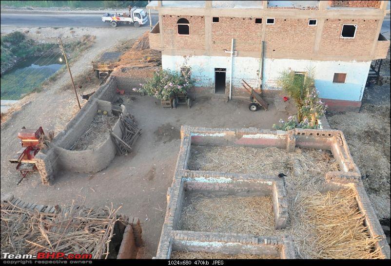 My Egypt Days : Photologue-dsc_1770.jpg