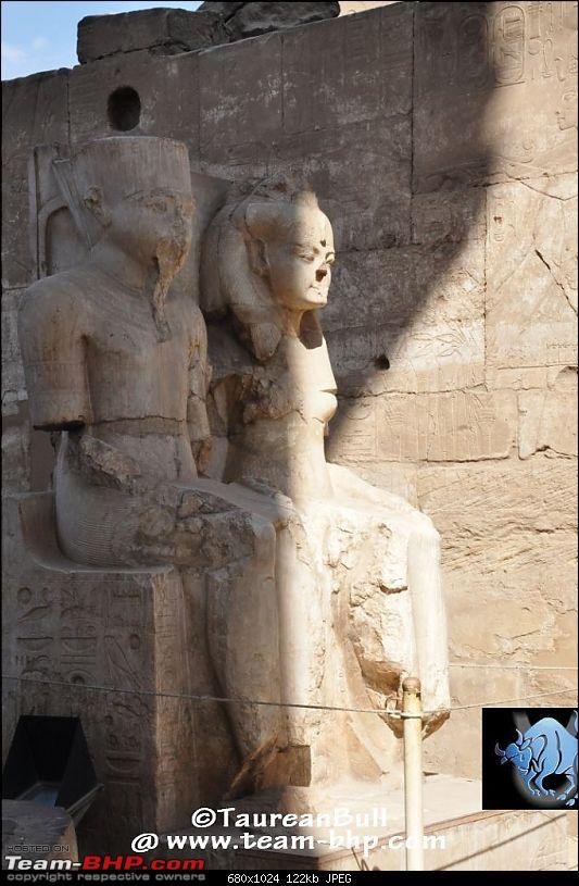 My Egypt Days : Photologue-dsc_1900.jpg