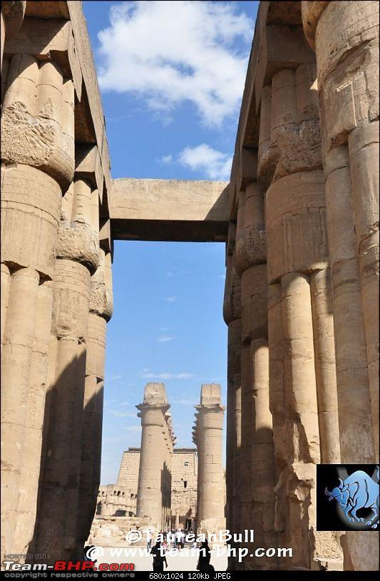 My Egypt Days : Photologue-dsc_1929.jpg