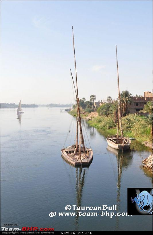 My Egypt Days : Photologue-dsc_2118.jpg