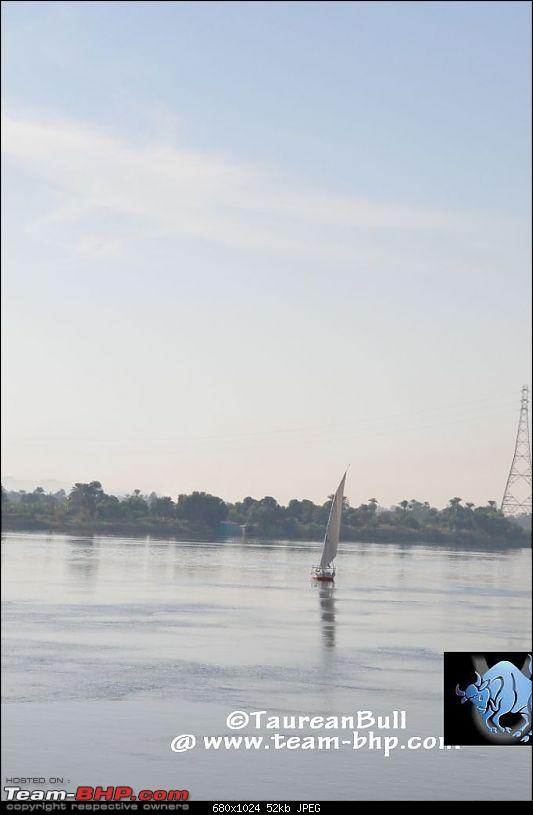 My Egypt Days : Photologue-dsc_2124.jpg