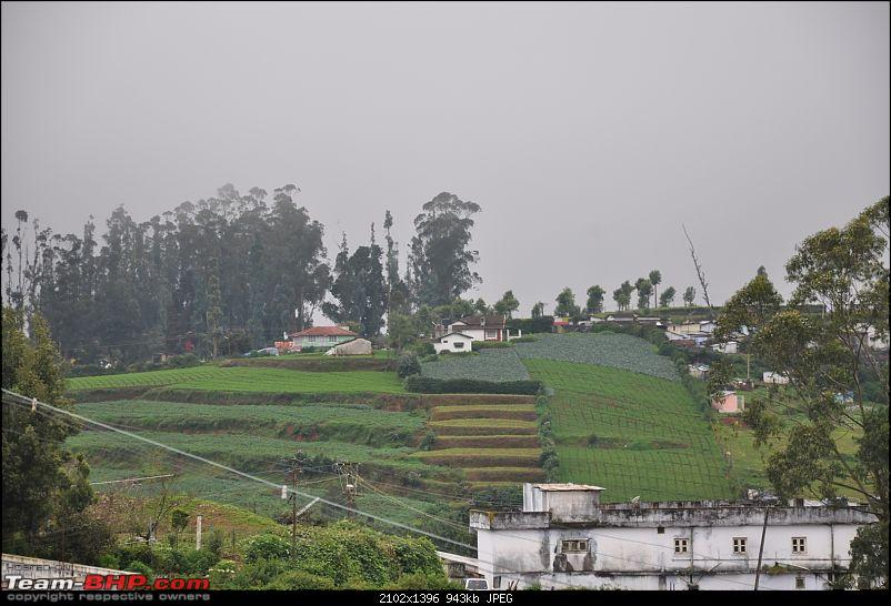 4 days in Ooty – drive from Chennai-dsc_0368.jpg