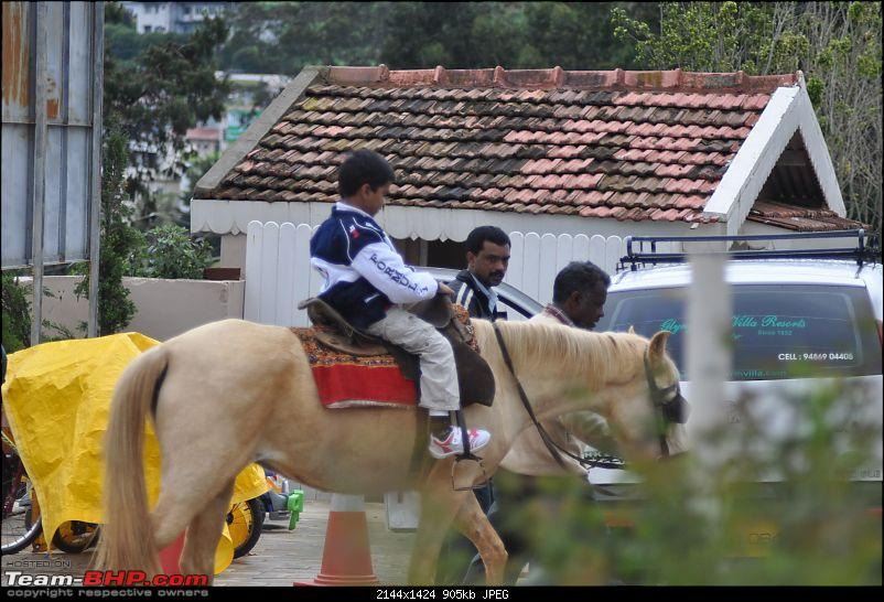 4 days in Ooty – drive from Chennai-dsc_0335.jpg