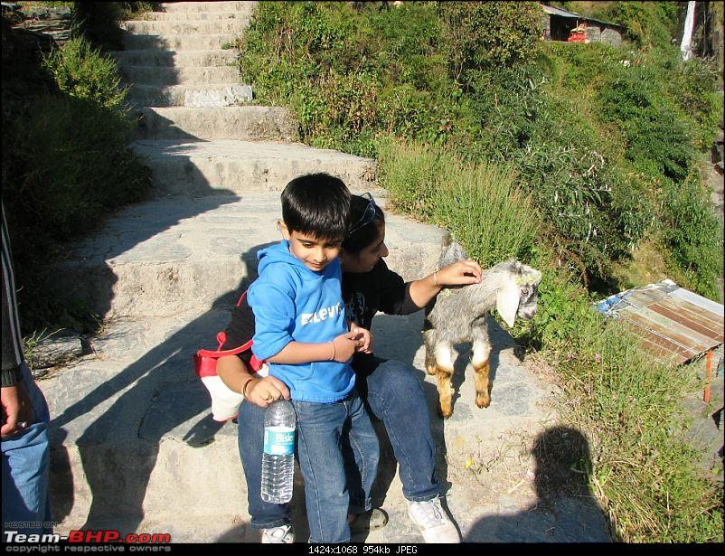 Rajdhani, City Of Temples, Gov't in Exile & a culture that is trying hard to survive-mcleodganj-546kid4.jpg