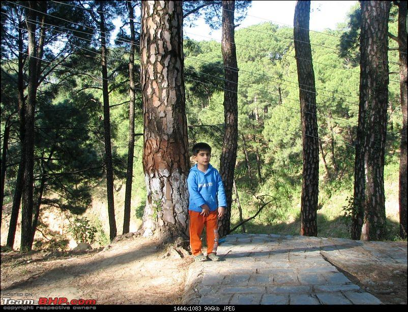 Rajdhani, City Of Temples, Gov't in Exile & a culture that is trying hard to survive-mcleodganj-594park5.jpg