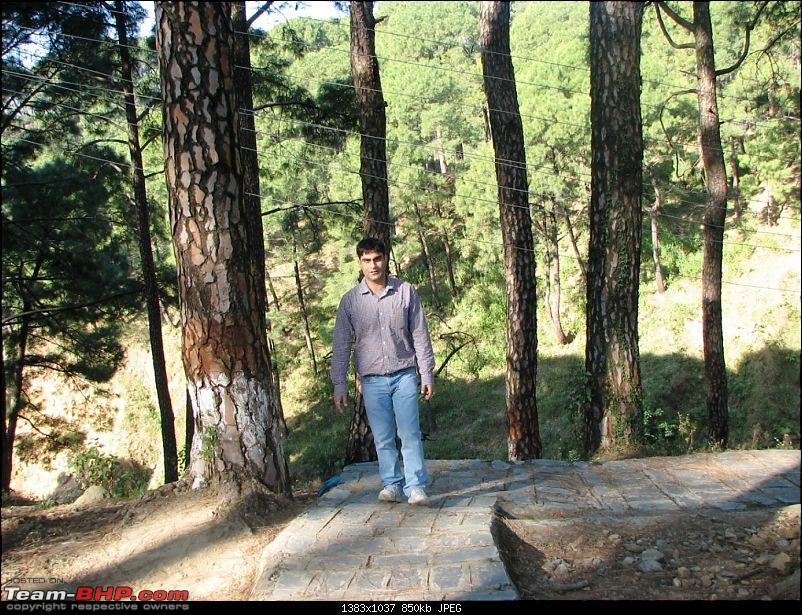 Rajdhani, City Of Temples, Gov't in Exile & a culture that is trying hard to survive-mcleodganj-609park7.jpg