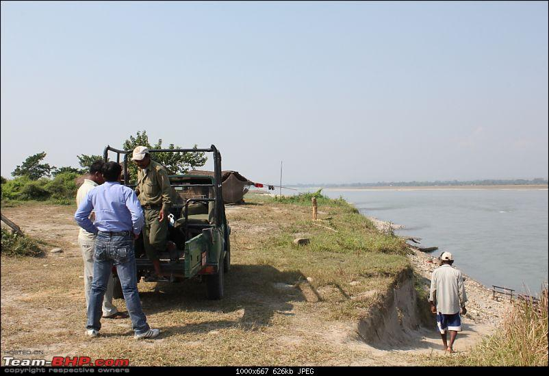 In search of Indian One-horned Rhinos-img_0765.mod.jpg