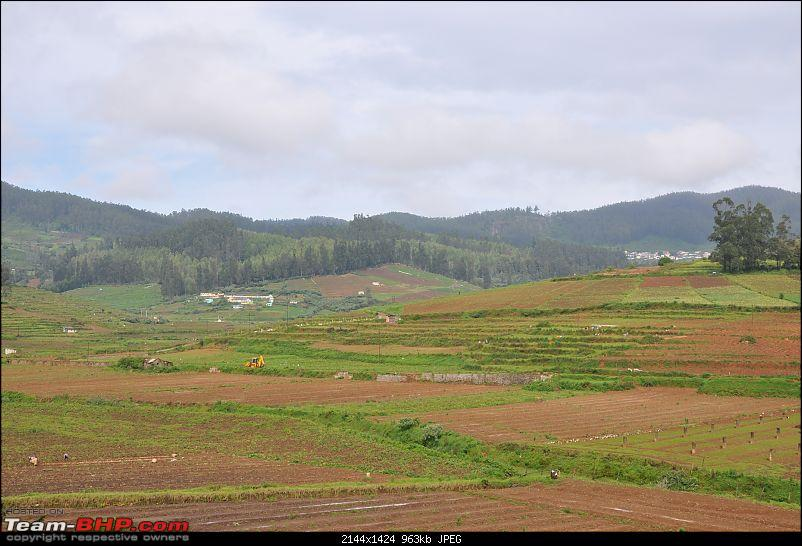 4 days in Ooty � drive from Chennai-dsc_0497.jpg