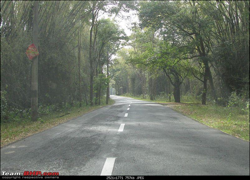 The highway to God's own Country : Wayanad-img_1769.jpg
