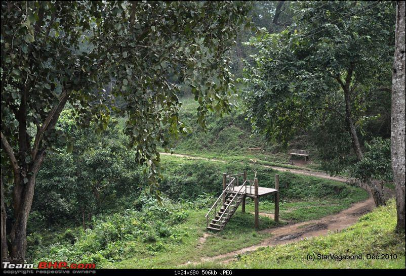 Story of a Vacation II : A page out of Jungle Book & experiencing God's Own Country-096-empty-machan-trail.jpg
