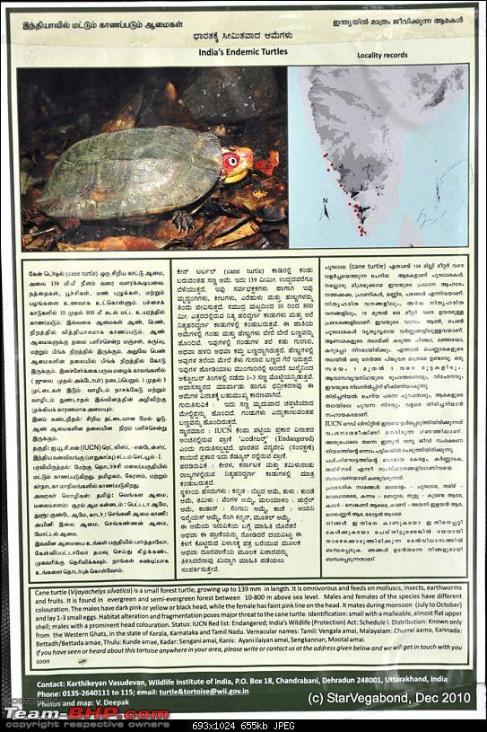 Story of a Vacation II : A page out of Jungle Book & experiencing God's Own Country-109-about-great-indian-turtle.jpg