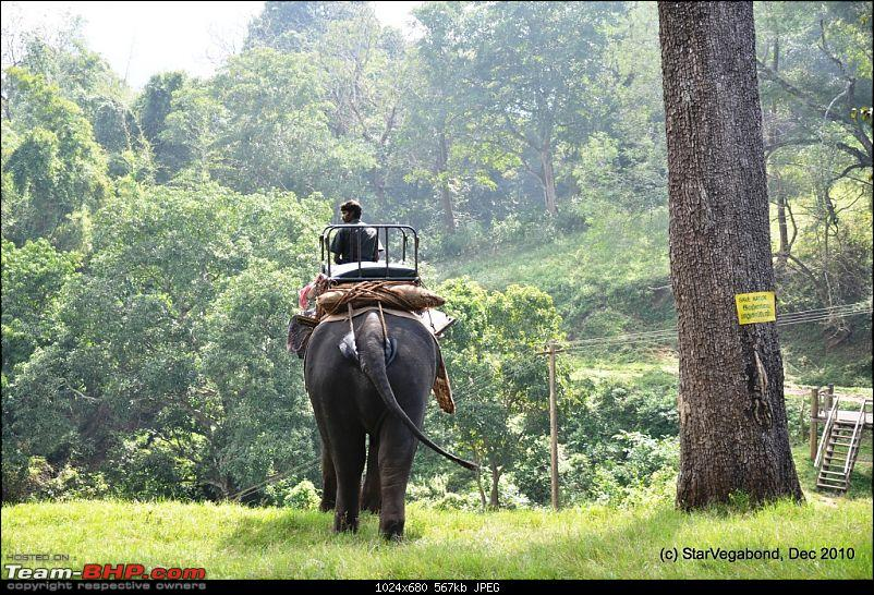 Story of a Vacation II : A page out of Jungle Book & experiencing God's Own Country-115-elephant-wals-down-hill-towards-machan.jpg