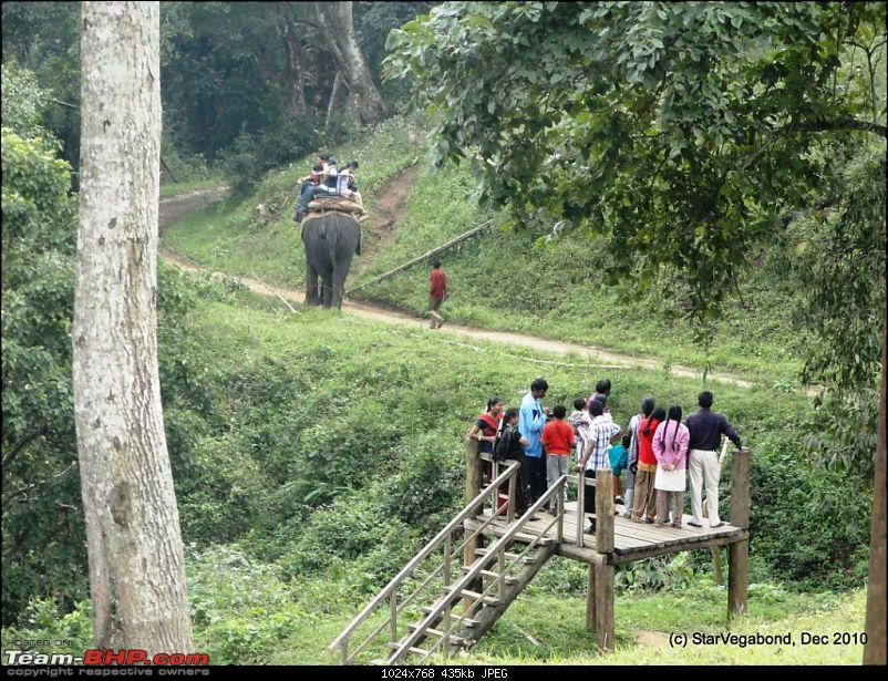 Story of a Vacation II : A page out of Jungle Book & experiencing God's Own Country-116-but-queue-elephant-ride-already-3-hours-long.jpg