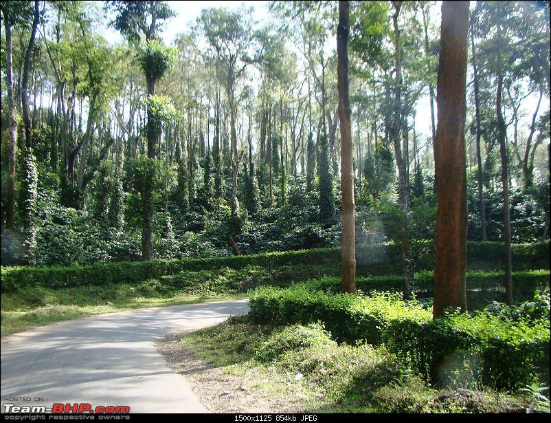Southern Odyssey : 5000 kms through South India-7-road-towars-kutta.jpg