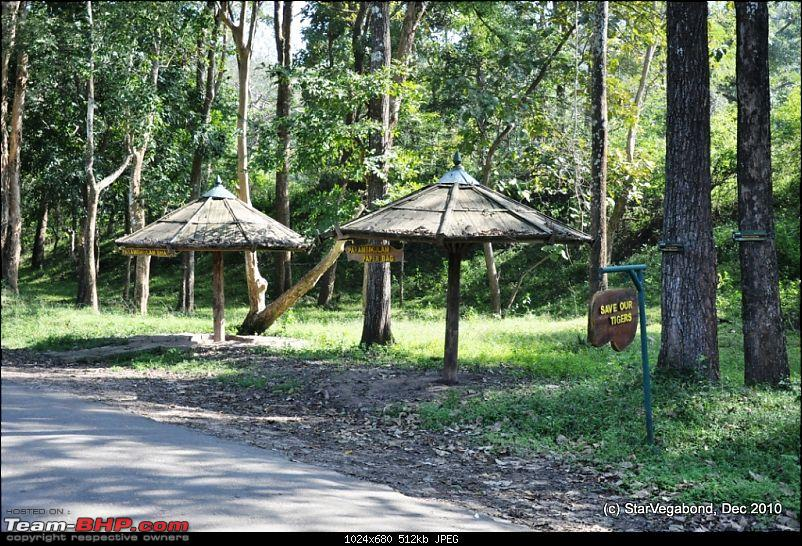 Story of a Vacation II : A page out of Jungle Book & experiencing God's Own Country-124-bus-stop-safari.jpg