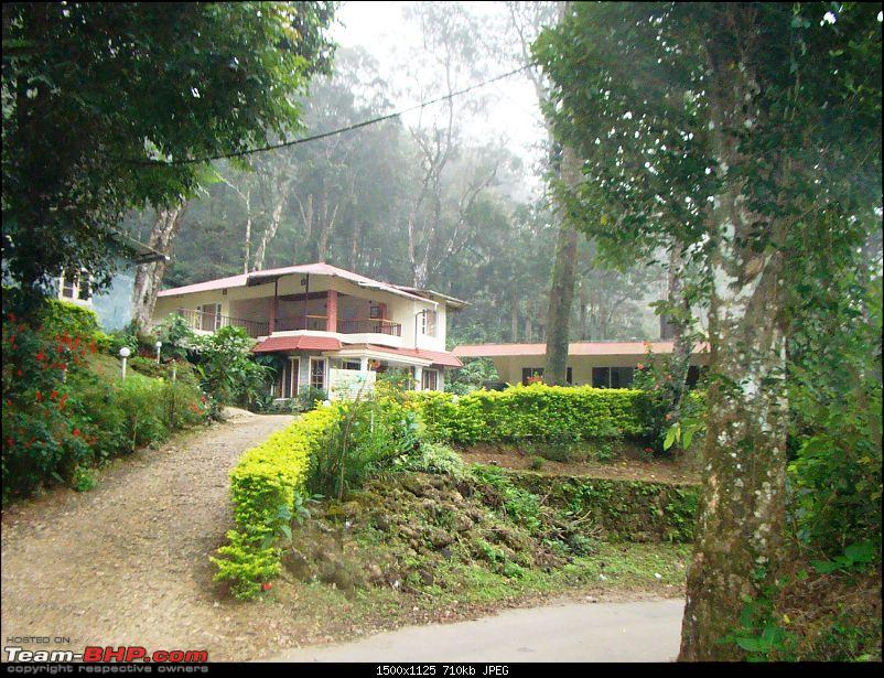 Southern Odyssey : 5000 kms through South India-6-ranger-woods-munnar-1.jpg