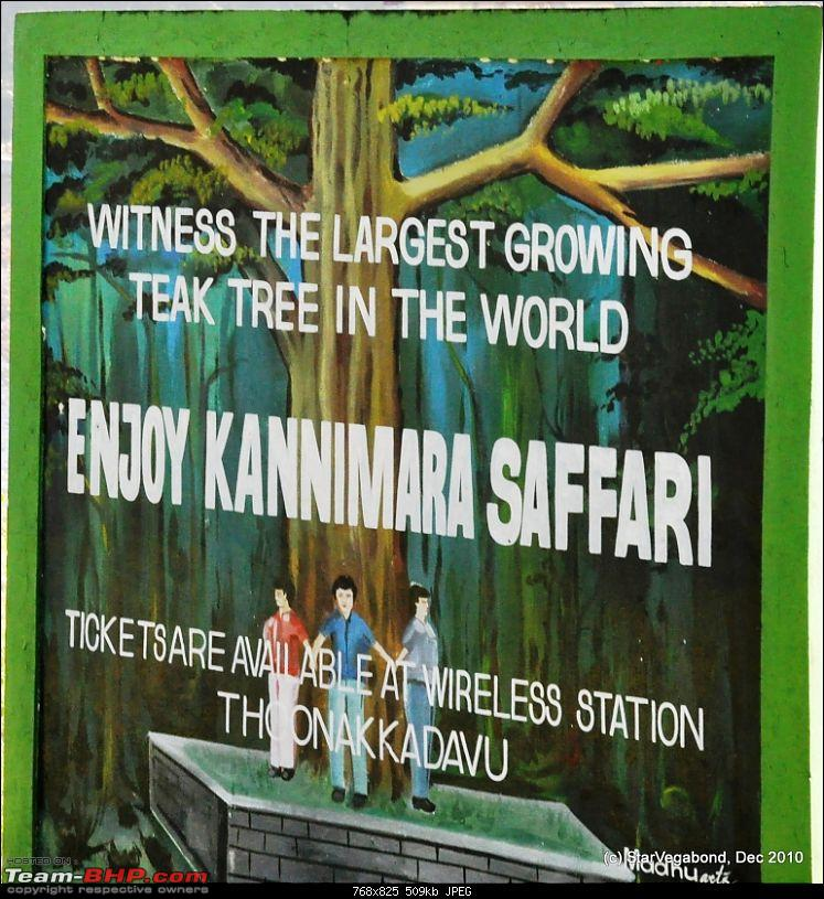 Story of a Vacation II : A page out of Jungle Book & experiencing God's Own Country-149-next..kannimara-safari-ii.jpg