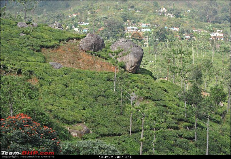 Photologue-The Nilgiri Mountain Rail-dsc_6436.jpg