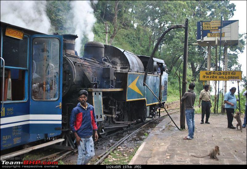 Photologue-The Nilgiri Mountain Rail-dsc_6537.jpg