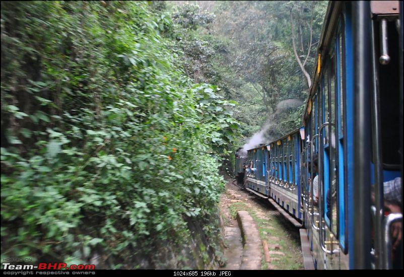Photologue-The Nilgiri Mountain Rail-dsc_6552.jpg