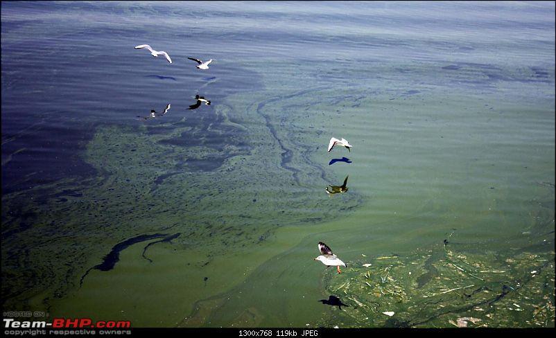Yet another Rajasthan trip - Sambhar lake, Ajmer, Pushkar, Osian (Jodhpur), Jaisalmer-img_9877.jpg