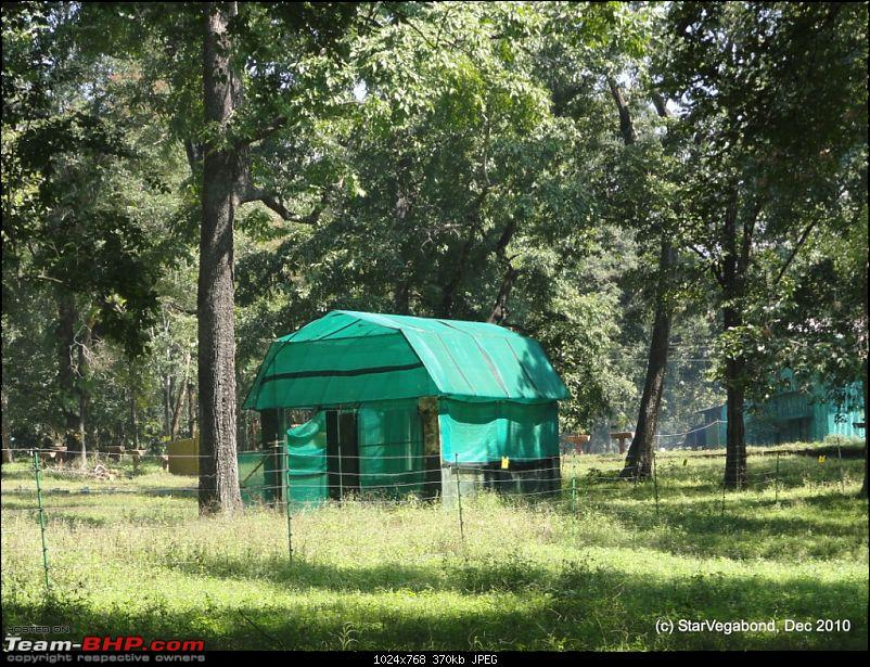 Story of a Vacation II : A page out of Jungle Book & experiencing God's Own Country-299-different-form-tent.jpg