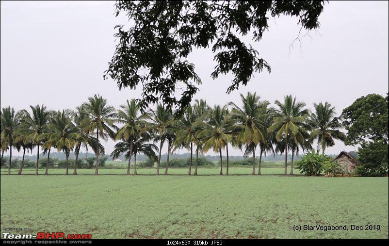 Story of a Vacation II : A page out of Jungle Book & experiencing God's Own Country-402-view-delayed-our-lunch.jpg