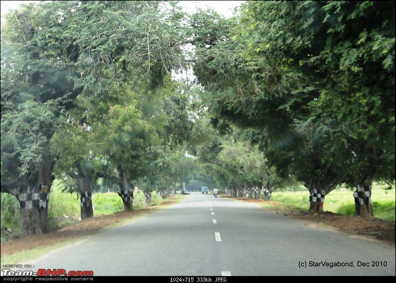 Story of a Vacation II : A page out of Jungle Book & experiencing God's Own Country-407-roadsweregood.jpg