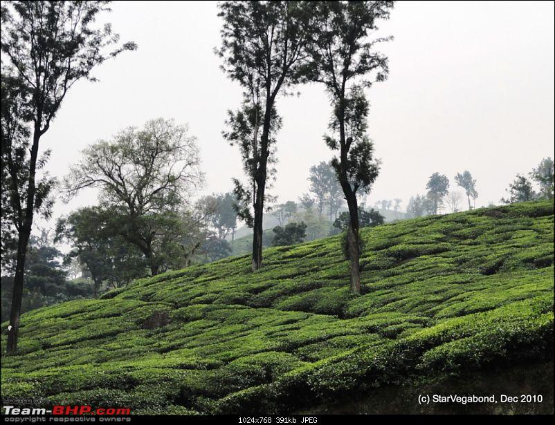 Story of a Vacation II : A page out of Jungle Book &amp; experiencing God's Own Country-438-tea-gardens-around.jpg <br /> 439 and one more water fall .. Name ?<br /> <a href=