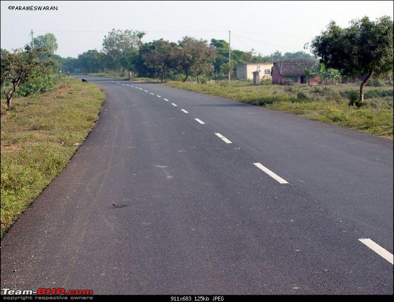 The Vedanthangal Trip-road.jpg