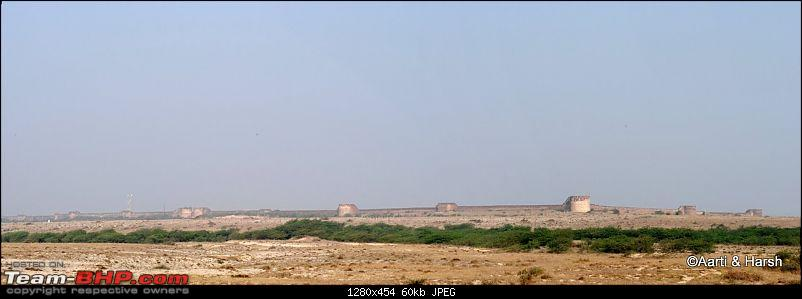 Raiders of the Rann: A Kachchhi Kaleidoscope (Gujarat)-dsc_1461.jpg