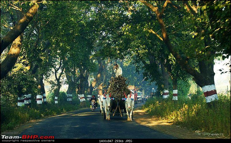 An incredible road trip to the �Pearl of the Orient� � Goa-10-enroute_to_gagan.bawda.jpg