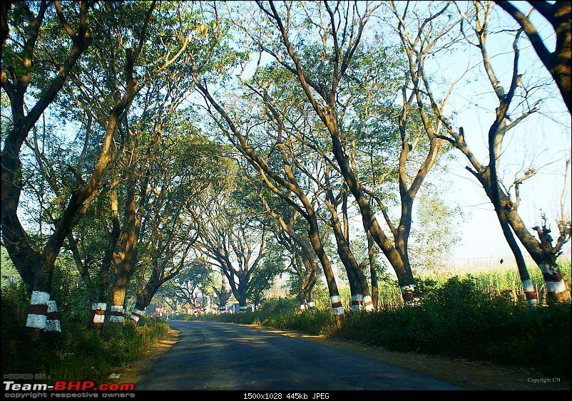 An incredible road trip to the �Pearl of the Orient� � Goa-13-enroute_to_gagan.bawda.jpg
