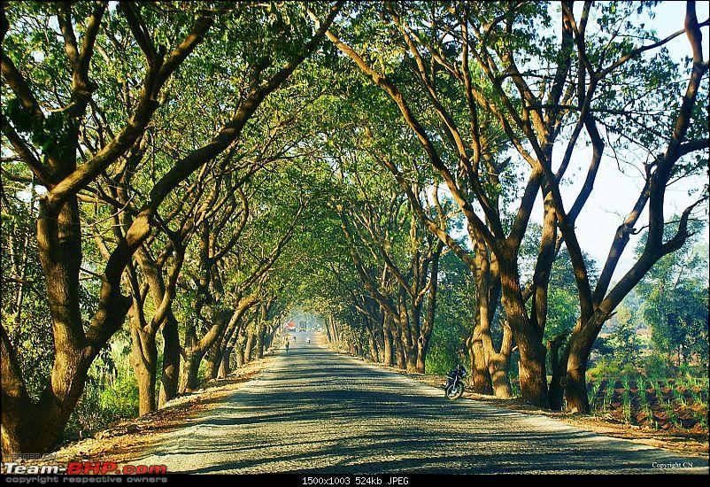 An incredible road trip to the �Pearl of the Orient� � Goa-25-enroute_to_gagan.bawda.jpg
