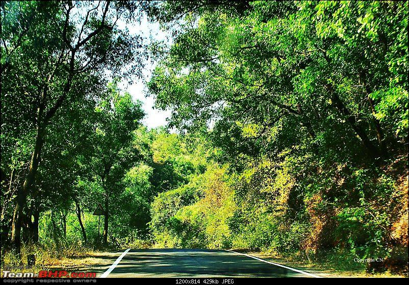 An incredible road trip to the �Pearl of the Orient� � Goa-8-road-after-gagan-bawda.jpg