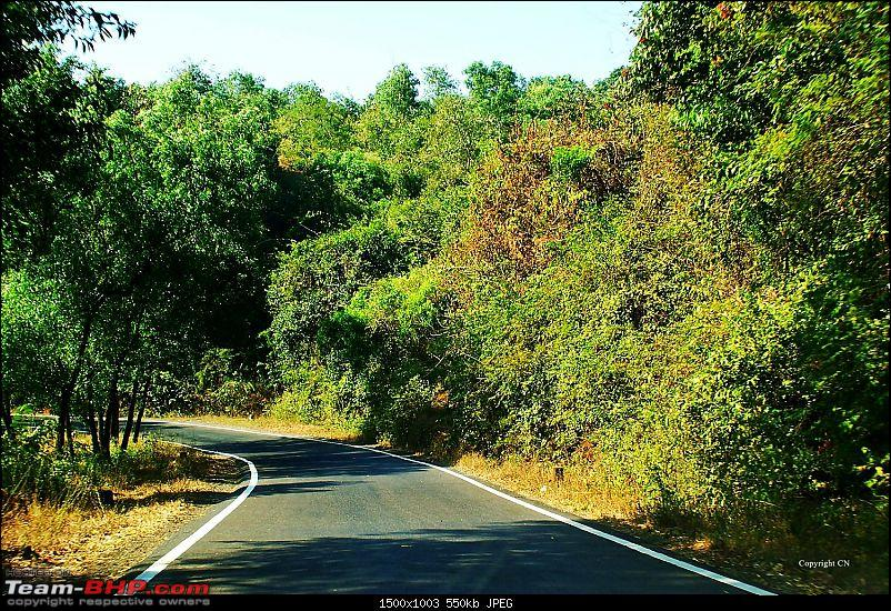 "An incredible road trip to the ""Pearl of the Orient"" – Goa-9-road-after-gagan-bawda.jpg"