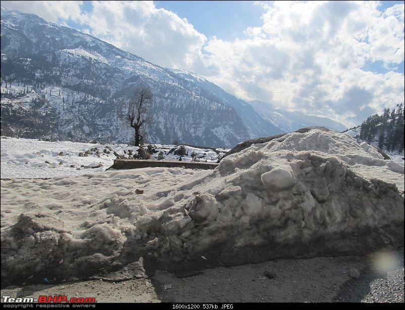 Incredible India A trip to Snow clad moutains and the deserts of India-picture-253.jpg