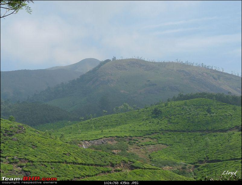 The Land of Three Rivers - Munnar, A Photolog-p1160974.jpg