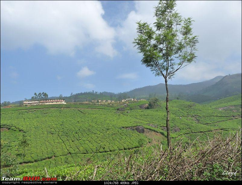 The Land of Three Rivers - Munnar, A Photolog-p1160975.jpg