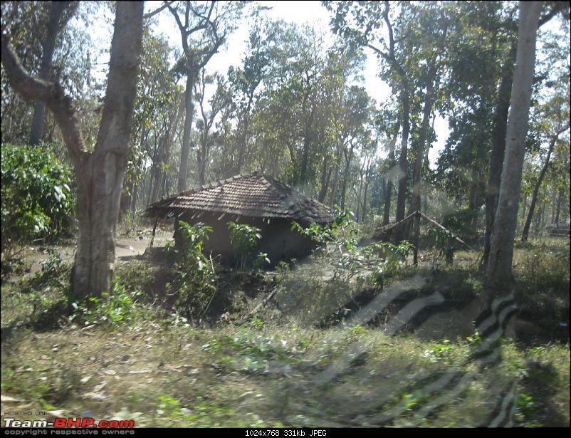 Mallus Bachelor Wild Kerala Wayanad Trip-img_1093.jpg