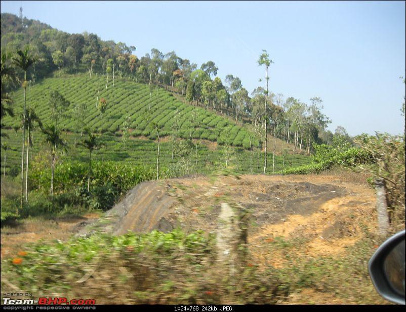 Mallus Bachelor Wild Kerala Wayanad Trip-img_1112.jpg