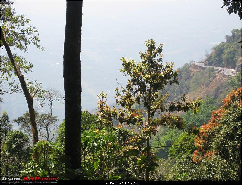 Mallus Bachelor Wild Kerala Wayanad Trip-img_1190.jpg